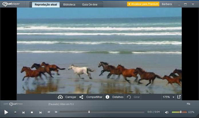 Real Times permite abrir vídeos em FLV e tem bibliotecas personalizadas (Foto: Reprodução/Barbara Mannara)