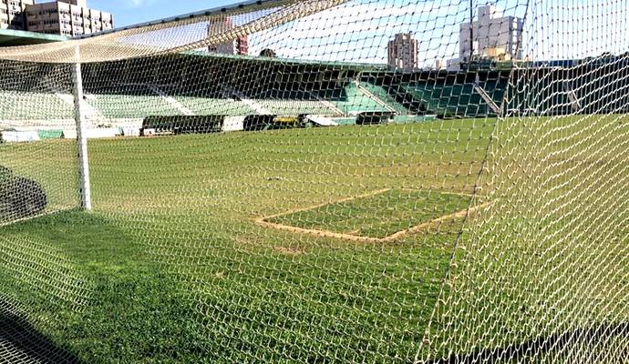 Estádio Brinco de Ouro, em Campinas (Foto: Murilo Borges)