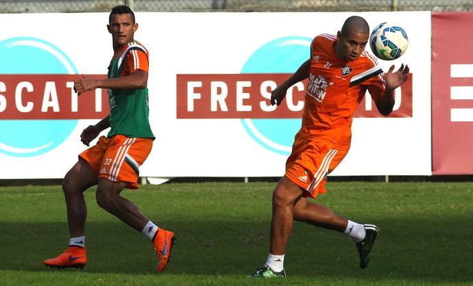 wellington paulista, fluminense (Foto: Nelson Perez/Fluminense FC)