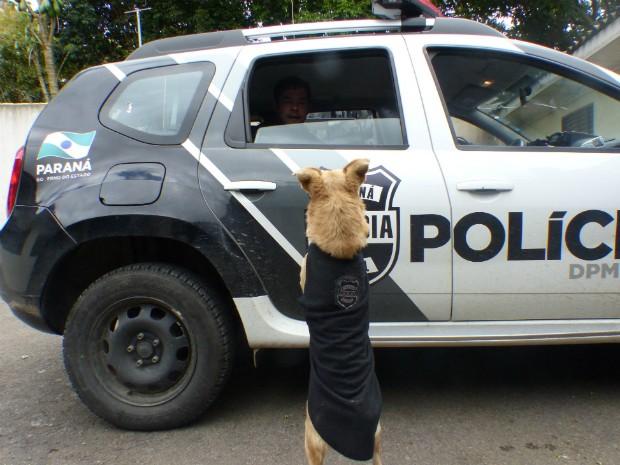 Stive ganhou uma roupa com o distintivo da Polícia Civil (Foto: Thais Skodowski/ G1)