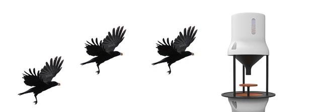 Tecnologia usa pássaros para pegar bitucas de cigarro das ruas (Foto: Divulgação)