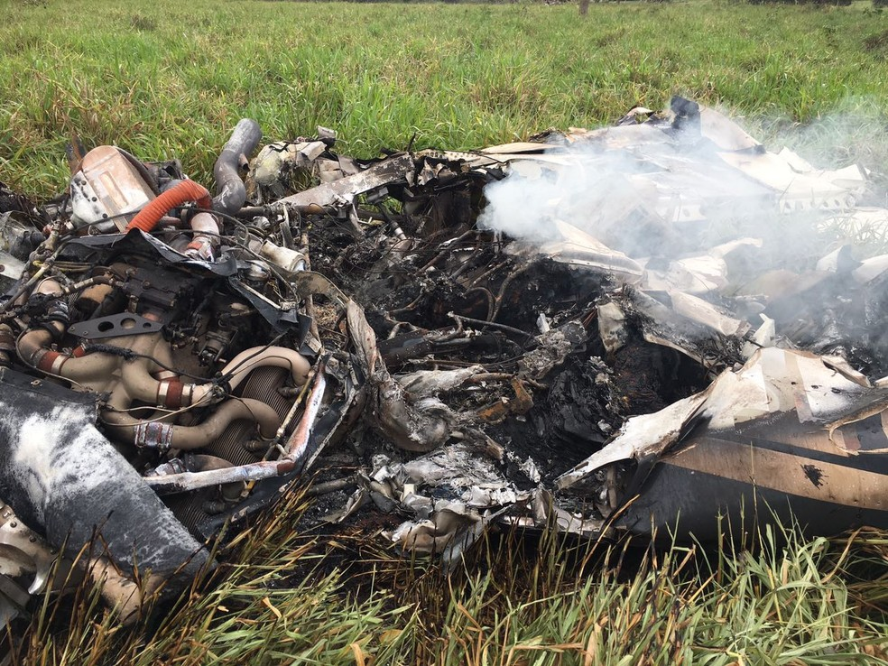 Avião bimotor ficou destruído; aeronave caiu em uma fazenda (Foto: Alisson Silva)