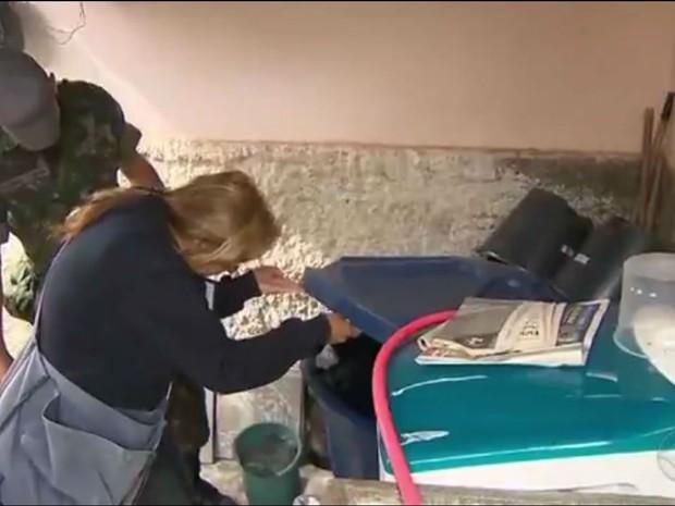 Agentes e Exército participam de força-tarefa contra Aedes aegypti em São João del Rei (Foto: Reprodução/TV Integração)