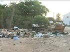 Reserva ambiental em São Luís é ameaçada pelo excesso de lixo