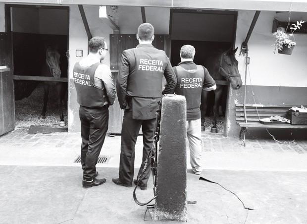 Sangue impuro: operação policial investiga sonegação na importação de cerca de mil cavalos (Foto: Corbis/ Latinstock)