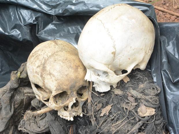Duas ossadas foram encontradas (Foto: Dennis Tavares/SSP/Divulgação)