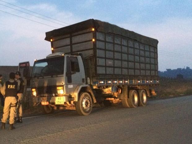 Carvão vegetal sem documentação estava em caminhão.  (Foto: Divulgação/ PRF)