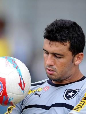 Edilson treino Botafogo (Foto: AGIF)
