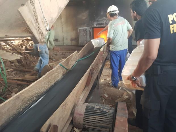 Incineração foi feita nesta sexta-feira (26), em Ji-Paraná (Foto: Marco Bernardi/ G1)
