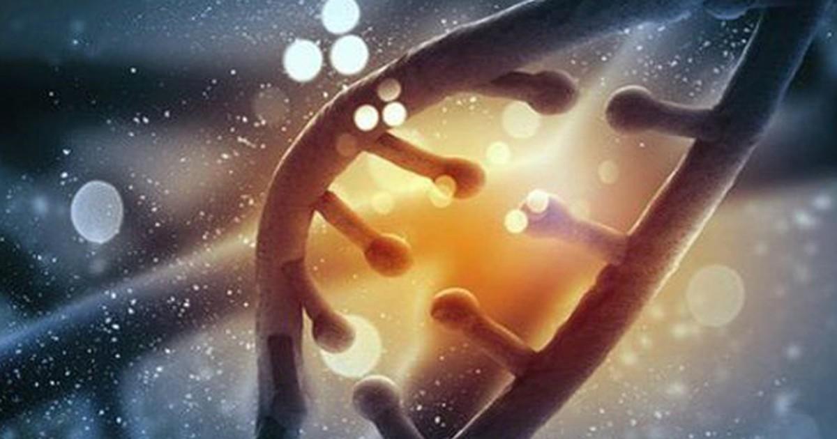 Islândia mapeia DNA de toda sua população