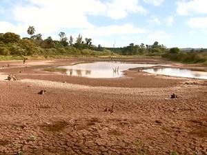 Nível da represa de Tambaú baixou três metros e a captação no reservatório foi suspensa (Foto: Ronnei Nicoletti/ EPTV)