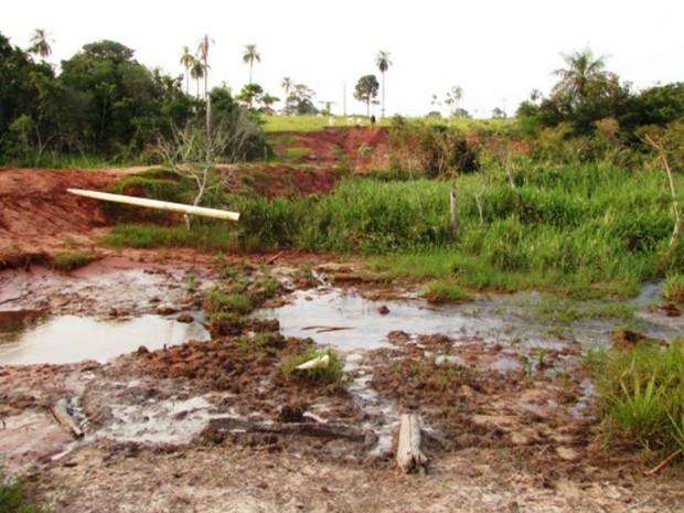 Mata ciliar ficou degrada com pisoteio do gado em propriedade de Iguatemi (Foto: Divulgação/ PMA)