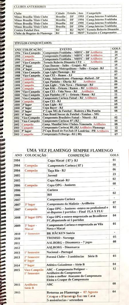 Montagem - Páginas: Gols do Flamengo - 690 - 2 (Foto: globoesporte.com)