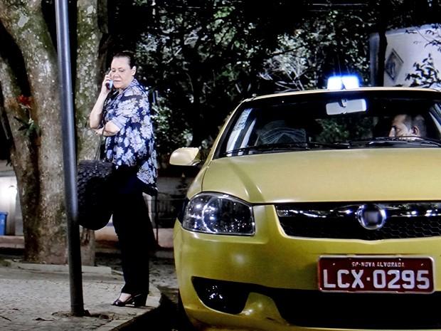 Antes de entrar no táxi para São Paulo, ela fala ao celular (Foto: TV Globo)