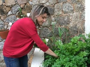 Condomínio em Florianópolis já tem 10m² destinados ao cultivo de plantinhas (Foto: RBS TV/Divulgação)