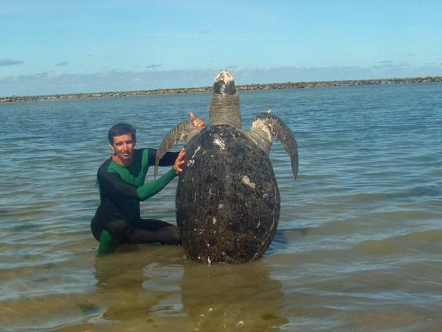 Tartaruga com cerca de 80 quilos é encontrada morta em praia de Olinda (Foto: Divulgação / Adriano Artoni)