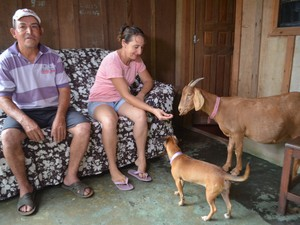 Casal diz que nunca irá vender o animal (Foto: Samira Lima/G1)