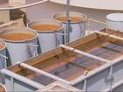 Com falta de chuvas, Candeias adota rodízio no abastecimento de água