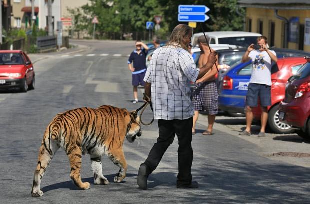 Jaromir Joo surpreendeu moradores de Letovice ao passear com tigre (Foto: Radek Mica/AFP)