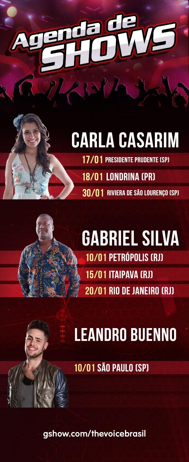 agenda de shows janeiro (Foto: The Voice Brasil)
