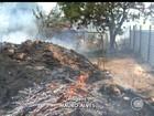 Incêndio atinge terreno baldio e Bombeiros controlaram o fogo