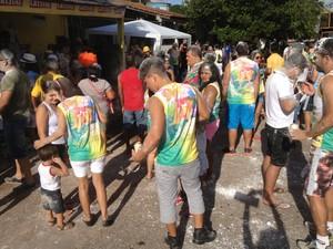Foliões se reúnem para fazer percurso de rua e celebrar a chegada de 2014 (Foto: Ivanete Damasceno/G1)