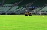 Empresa explica troca de gramado na Arena Palmeiras; Dérbi é incógnita (Tossiro Neto)