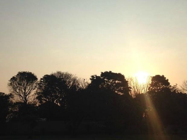 Sol apareceu em Campo Grande nesta quarta-feira, mas temperatura caiu  (Foto: Carla Salentim/G1 MS)
