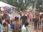Último dia de folia da Baratinha, no DF, tem água e pula-pula para crianças