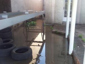 Esgoto preocupa vizinhos em Piracicaba (Foto: Fernanda Zanetti/G1)