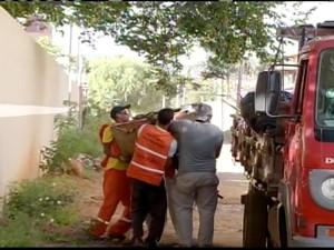 650 agentes vitiram mais de 15 mil casas na região Sul de Montes Claros (Foto: Reprodução/ Inter TV)