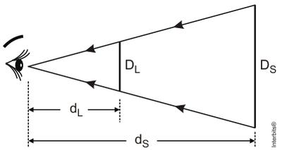 Figura (Foto: Reprodução)
