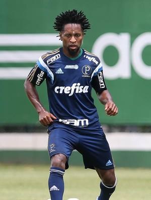 Zé Roberto Palmeiras