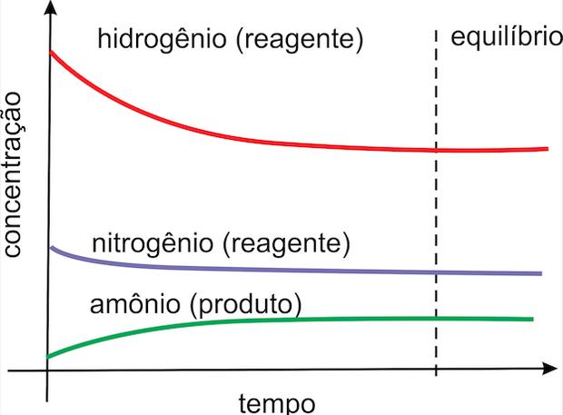 No equilíbrio, as concentrações de produtos e reagentes são constantes  (Foto: Wikicommons)