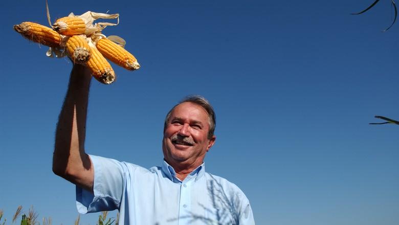 milho_ produtor_agricultor (Foto: Ernesto de Souza/ Editora Globo)