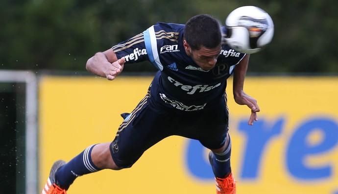 Augusto Palmeiras (Foto: Cesar Greco/Ag Palmeiras/Divulgação)