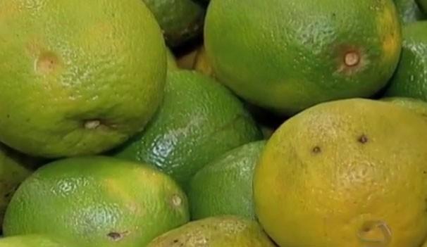 Nutricionista explica que deve ter cuidado com a alimentação também, priorizar alimentos integrais, frutas ao longo do dia principalmente as cítricas (Foto: TVMO)