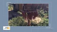 Após reportagem, mulher tem lixo recolhido na porta de casa
