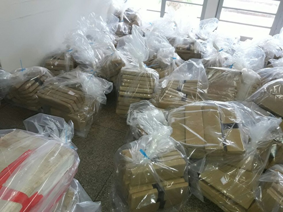 Quase cinco toneladas de maconha foram apreendidas em Teodoro Sampaio (Foto: Betto Lopes/TV Fronteira)