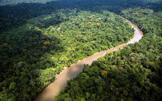 Vista das grandes extensões da Amazônia (Foto: AFP PHOTO / JODY AMIET)
