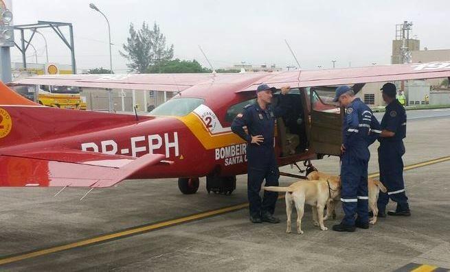 Cães e bombeiros de SC foram para Mariana (MG) nesta terça-feira (10) (Foto: Corpo de Bombeiros/Divulgação)