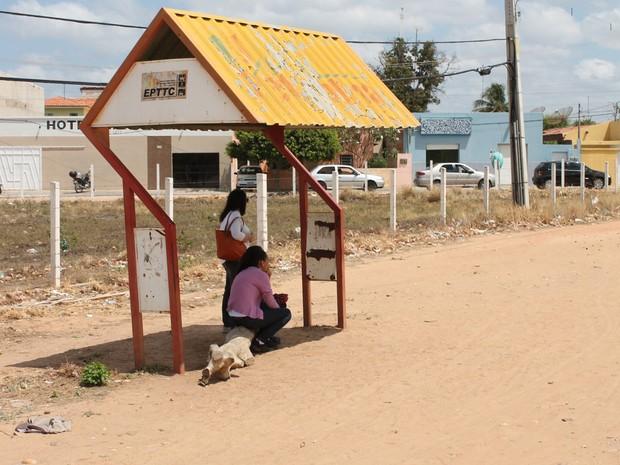 Usuários improvisam assento com um tronco de árvore na Avenida Cardoso de Sá (Foto: Yuri Matos/G1)