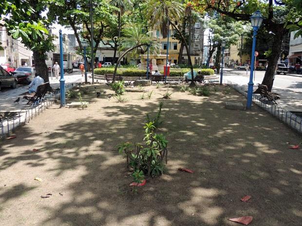 Praça Maciel Pinheiro, na Boa Vista, está abandonada. Um dos jardins quase não tem mais plantas, fonte está seca e bancos deteriorados (Foto: Marina Barbosa / G1)