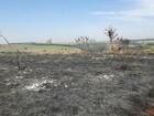 Bombeiros levam 7 horas para conter incêndio em 100 hectares de fazenda