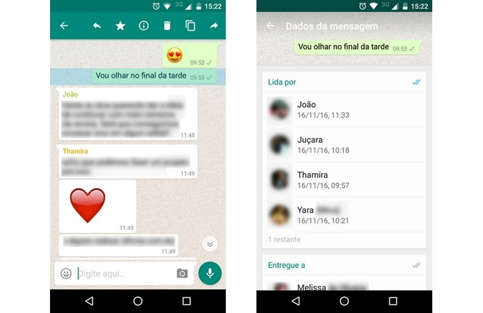WhatsApp mostra quais membros de um chat leram mensagem (Foto: Reprodução/Raquel Freire)