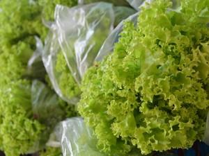 """Alfaces inorgânicos e orgânicos são encontrados na Feira do Produtor em Boa Vista. (Foto: Camila Dall""""Agnol/G1 RR)"""