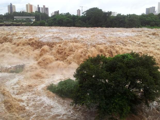 Rio Piracicaba na manhã desta quarta-feira (Foto: Claudia Assencio/G1)