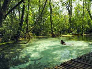 Areia que Canta Brotas (Foto: Secretaria de Turismo/Divulgação)