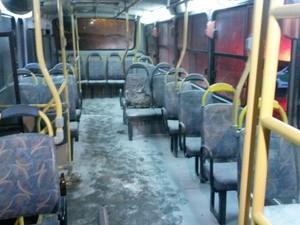 Usuários apagaram incêndio em ônibus de Joinville (Foto: Sara Kirchhof/RBS TV)
