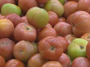 Preço do tomate caiu 20,3% em abril (Foto: Gaia Quiquiô/G1)